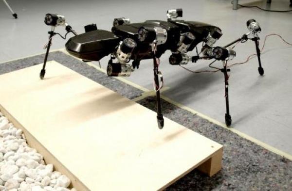 Адаптивный робот жук от CITEC