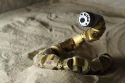 Робот змея может помогать в поисково-спасательных операциях